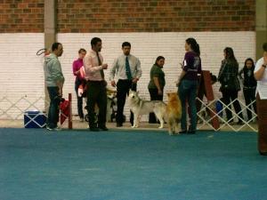 Exposição 17/10/2009 grupo